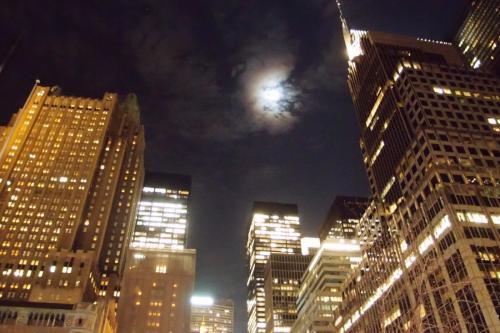 Luna NYC